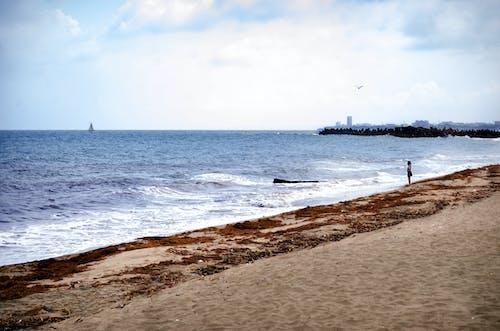 4k 桌面, 女孩, 沉默, 海灘 的 免费素材照片