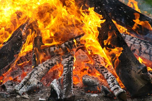 Close-Up Photography Of Burning Woods