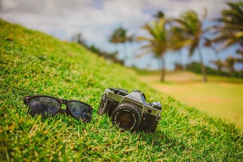 Fotobanka sbezplatnými fotkami na tému Canon, cestovať, dno, DSLR