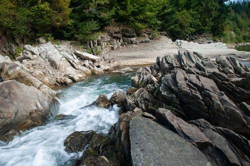 Gratis lagerfoto af å, dagslys, dagtimer, flod