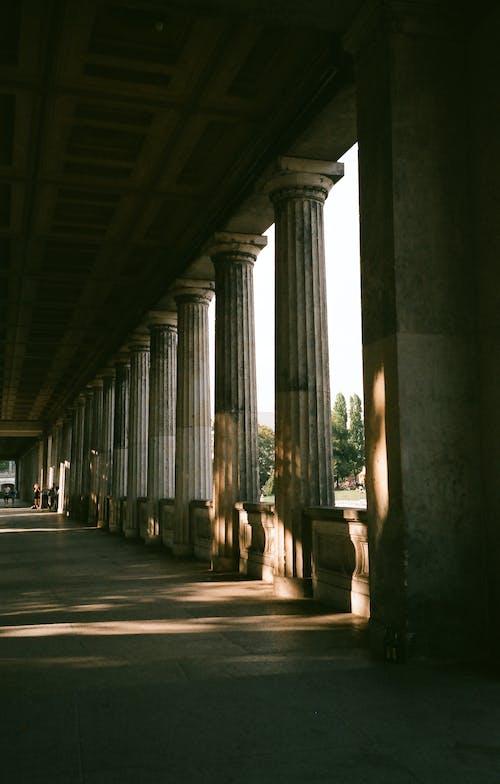 Foto d'estoc gratuïta de arquitectura, columnes, edifici, passadís