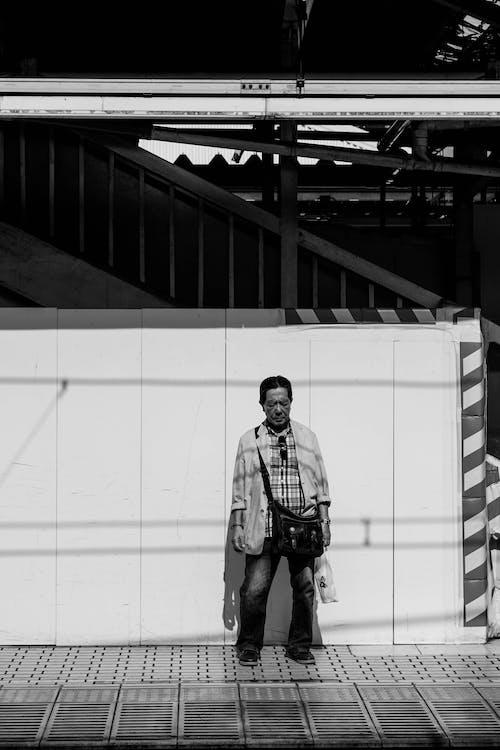 คลังภาพถ่ายฟรี ของ กลางแจ้ง, การยืน, ขาวดำ, คอย