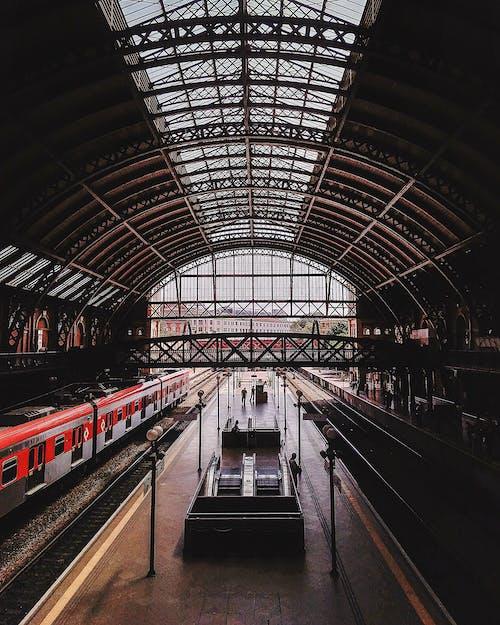 乘客, 交通系統, 公共, 公共交通工具 的 免费素材照片