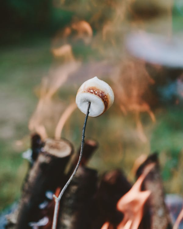 Person Holding S'mores