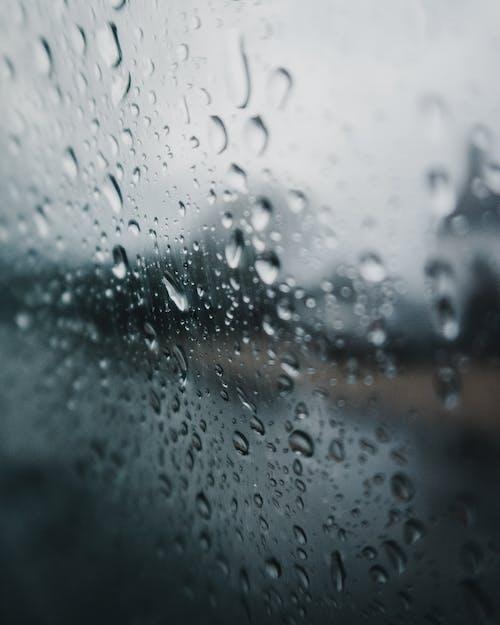 傾盆大雨, 多雨的, 暴雨, 水滴 的 免费素材照片