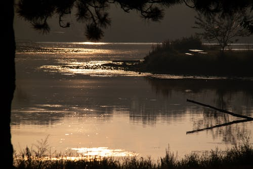 天性, 日出, 水, 湖 的 免費圖庫相片