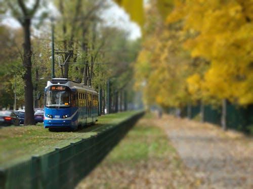 Základová fotografie zdarma na téma tramvaj, veřejná doprava