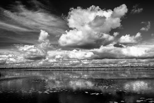 Grayscale Photography of Clouds
