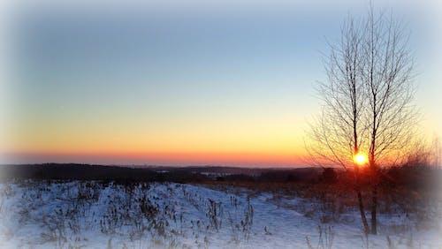 Základová fotografie zdarma na téma západ slunce, zima