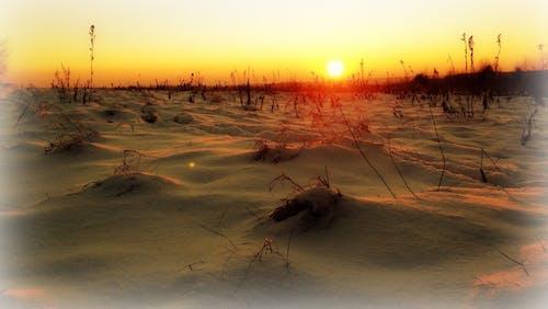 Základová fotografie zdarma na téma nádherný západ slunce, zima