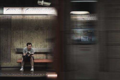Kostnadsfri bild av bänk, bok, ensam, läser bok