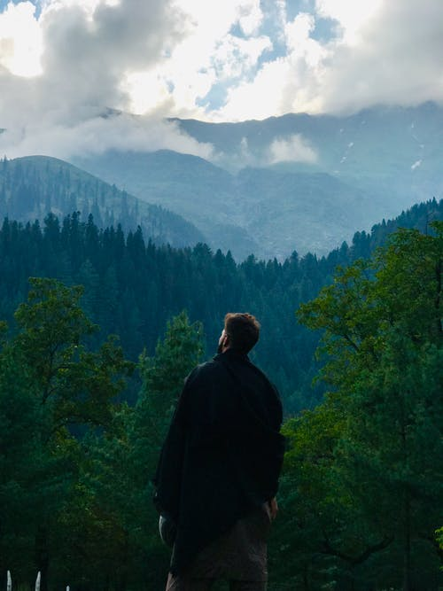 Man Overlooking Forest