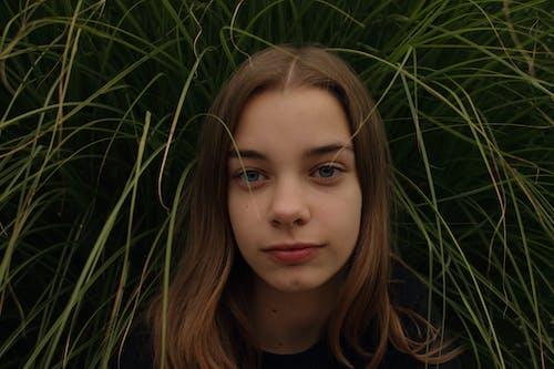 Základová fotografie zdarma na téma holka, tráva, žena