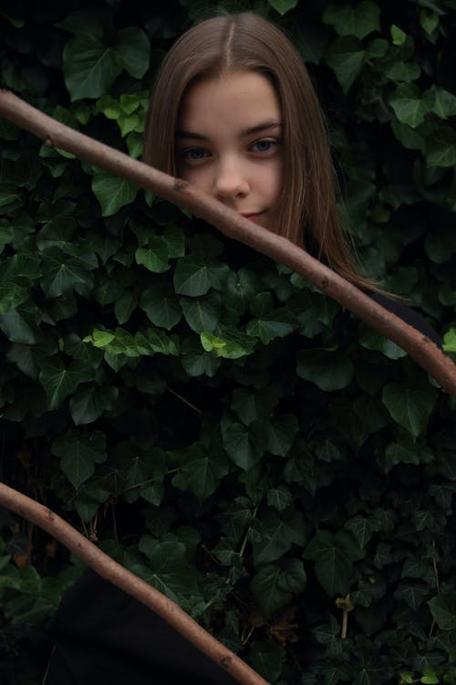 Free stock photo of girl, leaves, woman