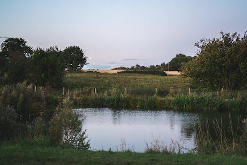 Бесплатное стоковое фото с англия, Загородный дом, озеро, проселочная дорога