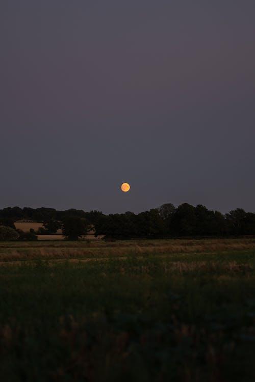 Darmowe zdjęcie z galerii z anglia, ciemny, czerwony księżyc, dramatyczny