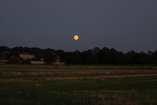 Бесплатное стоковое фото с англия, красная луна, кровавая луна, луна