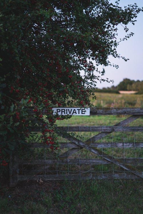 Бесплатное стоковое фото с англия, въезд запрещен, дерево, деревянный забор