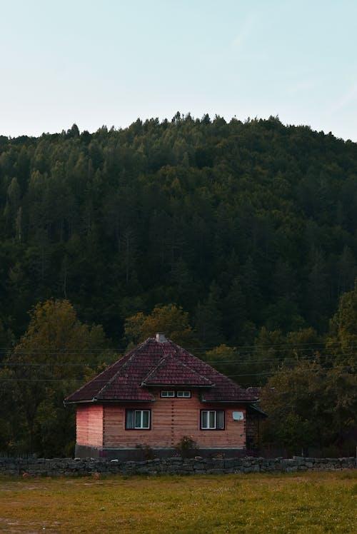 Brown Cabin Near Trees