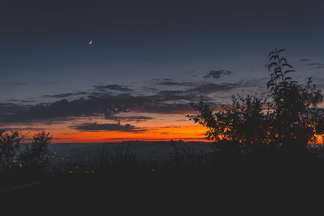 alba, alba al vespre, arbres