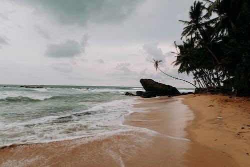 Безкоштовне стокове фото на тему «біля океану, безтурботний, берег моря, берег океану»