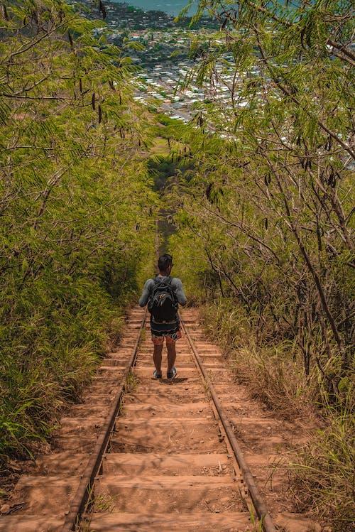 Foto d'estoc gratuïta de a baix, caminada, Hawaii, kokohead