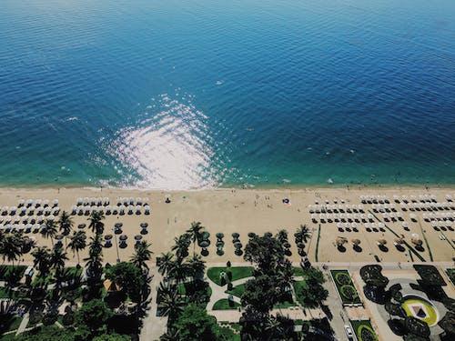 Kostnadsfri bild av högtider, nhatrang, Sol, strand
