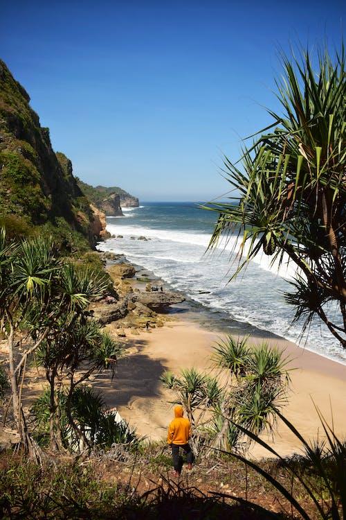Ảnh lưu trữ miễn phí về biển xanh, bờ biển, cuộc phiêu lưu, người châu Á
