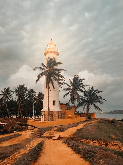 塔, 建造, 日光, 棕櫚樹 的 免费素材照片