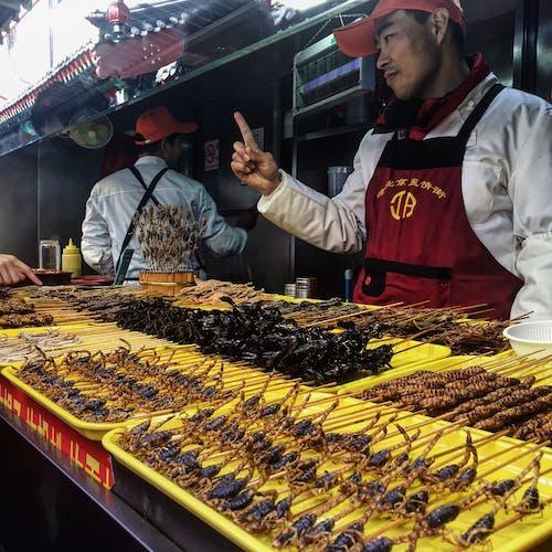 Immagine gratuita di cina, insetti, pechino