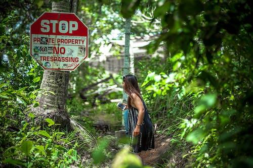 Woman Standing Near Coconut Palm Tree