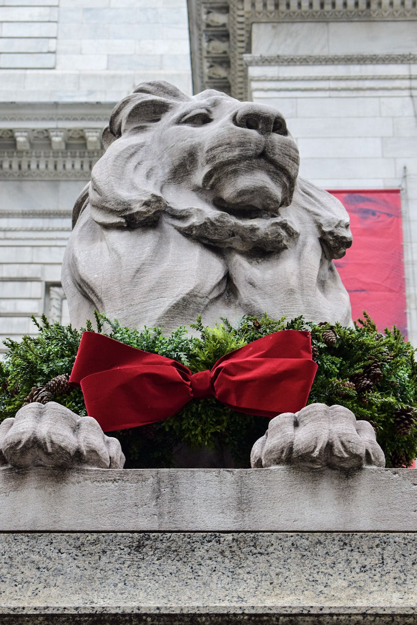 Free stock photo of lion, new york city, New York Public Library, statue