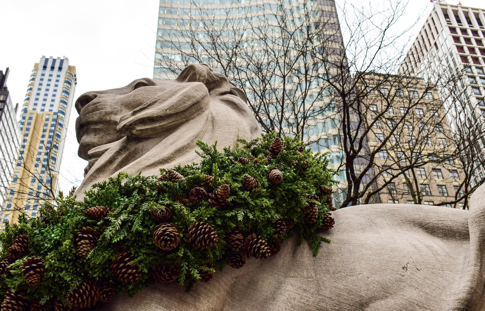Free stock photo of lion, lion statue, new york, new york city