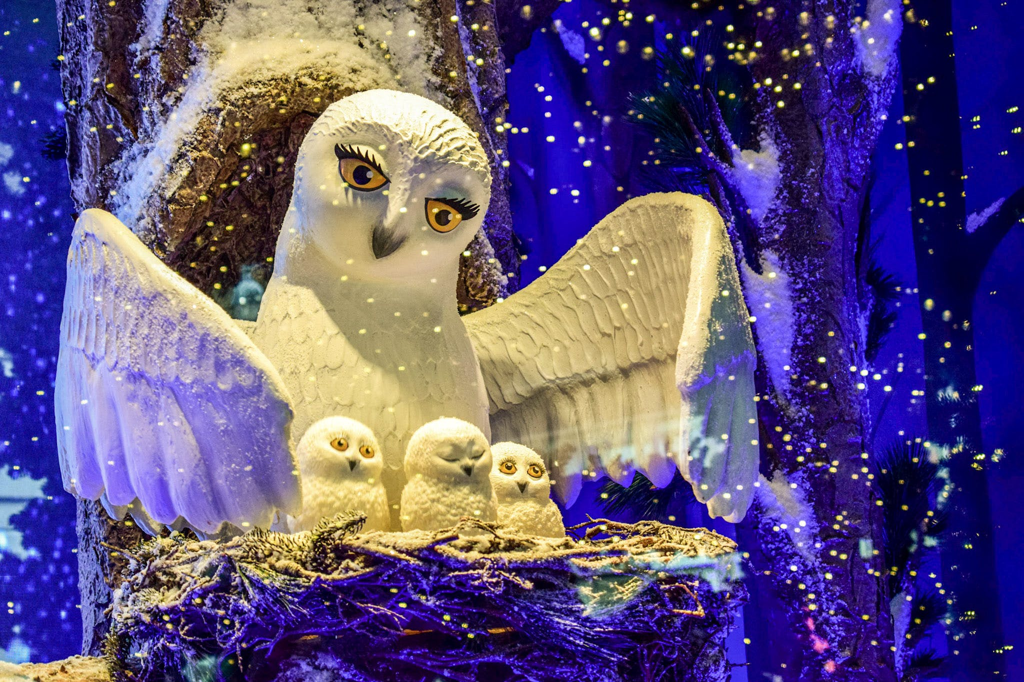 Free stock photo of christmas lights, holiday, owl, statue