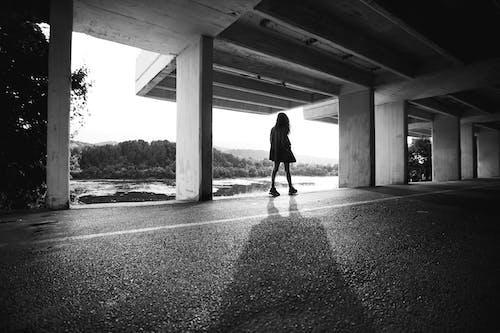 Foto profissional grátis de água, árvores, concreto, corpo
