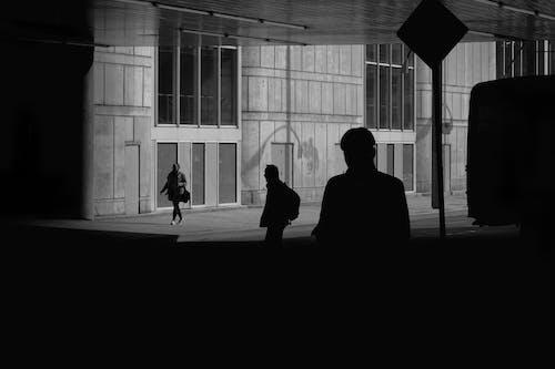 Ảnh lưu trữ miễn phí về ảnh nghệ thuật, ánh sáng, bóng, cửa sổ