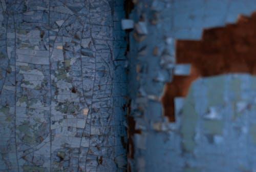 coulor, 관념적인, 균열, 나무의 무료 스톡 사진