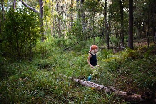 Photo of Kid Walking in a Forest