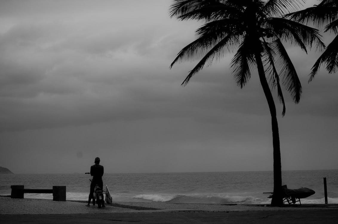 černobílý, cestování, jednobarevný