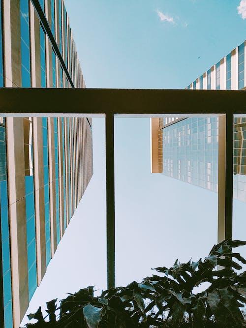 Immagine gratuita di architettura, edificio, prospettiva, ripresa dal basso