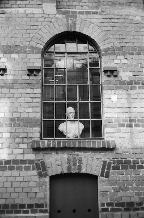 れんが壁, ガラス窓, バスト, ヘッドバストの無料の写真素材