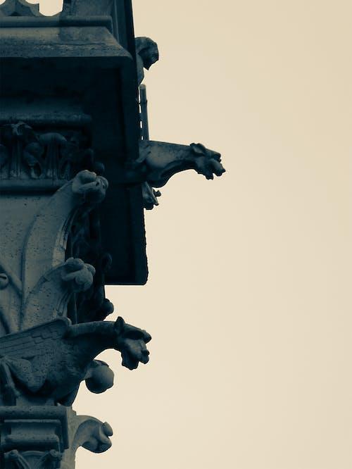 Fotos de stock gratuitas de basílica, Basílica del Sagrado Corazón de París, estatuillas, gafas de sol