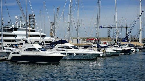 Immagine gratuita di barche, cantiere navale, oceano, yacht
