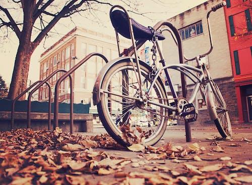 Foto d'estoc gratuïta de bici, bloquejar, bloquejat, sèpia