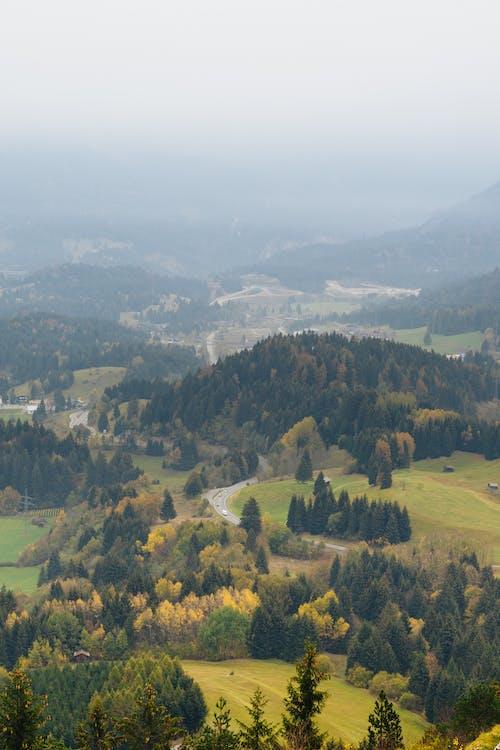 agrement, Alpi, alpin