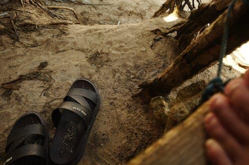 Foto d'estoc gratuïta de descalç, dogwalk, estètic, gent caminant