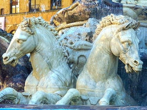 Foto stok gratis destinasi turis, fotografi perjalanan, kuda, objek turis