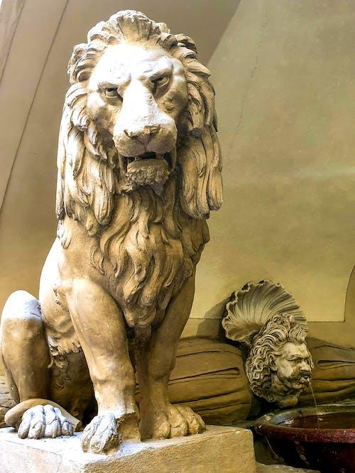 Základová fotografie zdarma na téma cestování fotografie, cíl cesty, lev, palazzo vecchio