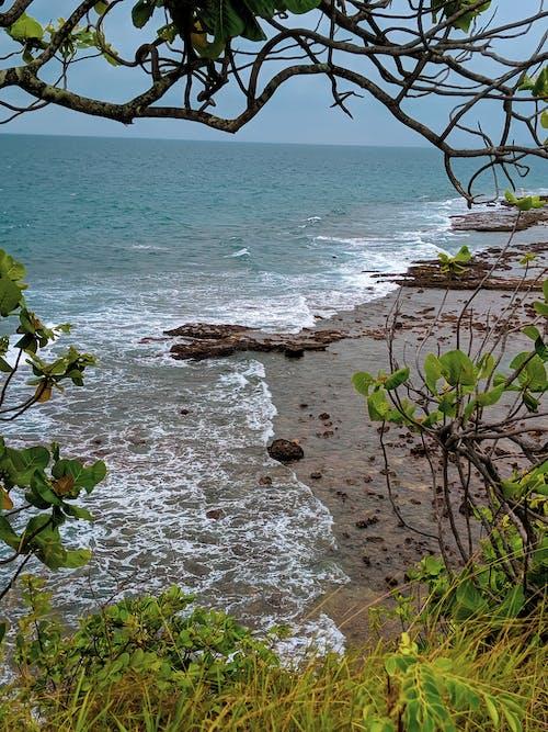 Δωρεάν στοκ φωτογραφιών με γαλαζια θαλασσα, γαλάζια νερά, ζωή στη φύση, μητέρα φύση