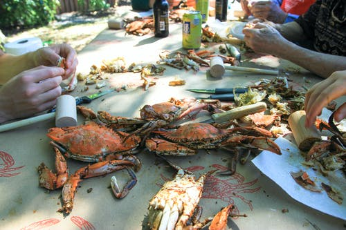 Free stock photo of Crab Feast, crabs, seafood